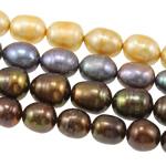 Rajs Beads ujërave të ëmbla kulturuar Pearl, Pearl kulturuar ujërave të ëmbla, Oriz, i lyer, ngjyra të përziera, 9-10mm, : 0.8mm, : 15.7Inç, 100Fillesat/Qese,  Qese