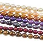 Rajs Beads ujërave të ëmbla kulturuar Pearl, Pearl kulturuar ujërave të ëmbla, Oriz, i lyer, ngjyra të përziera, 4-5mm, : 0.8mm, : 16Inç, 100Fillesat/Qese,  Qese