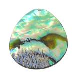 Pendants Natyrore predhë guaskë, Lot, asnjë, asnjë, asnjë, 30.50x40x1.50mm, : 1.8mm, 10PC/Shumë,  Shumë