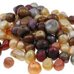 Barok Beads kulturuar Pearl ujërave të ëmbla, Pearl kulturuar ujërave të ëmbla, Nuggets, i lyer, ngjyra të përziera, 9-12mm, : 0.8mm,  KG