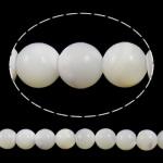 Beads Natyrore Deti Shell, Round, natyror, asnjë, e bardhë, Një, 6mm, : 0.8mm, : 15.3Inç, 20Fillesat/Shumë, approx71pcs/strand,  Shumë