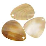 Pendants Shell, Deti Shell, Lot, asnjë, asnjë, asnjë, 20x25x1mm, : 2mm, 100PC/Shumë,  Shumë