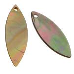 Pendants Shell, Deti Shell, Syri kali, asnjë, asnjë, asnjë, 9x25x1-2mm, : 1mm, 100PC/Shumë,  Shumë