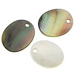 Pendants Natyrore Zi Shell, Black Shell, Oval Flat, asnjë, asnjë, asnjë, 7x9x1mm, : 1mm, 500PC/Shumë,  Shumë