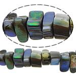 Beads predhë guaskë, Shell Guaskë, Nuggets, asnjë, asnjë, asnjë, 4-5x7-14x6-10mm, : 1.5mm, :16Inç, 5Fillesat/Shumë, 83Pcs/Strand,  Shumë