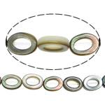 Beads Zi Shell, Black Shell, Letër, asnjë, asnjë, asnjë, 8x6mm, : 0.8mm, :16Inç, 5Fillesat/Shumë, 50 Pcs/Strand,  Shumë