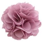 Lule, asnjë, asnjë, vjollcë, 60x60mm, 24PC/Shumë,  Shumë
