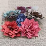 Leckë, Lule, asnjë, asnjë, ngjyra të përziera, 75x75mm, 50PC/Shumë,  Shumë