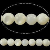 Natürliche weiße Muschelperlen, rund, 4.50mm, Bohrung:ca. 0.8mm, Länge:ca. 16 ZollInch, 20SträngeStrang/Menge, ca. 94PCs/Strang, verkauft von Menge