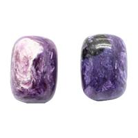 Natürliche Charoit Perlen, Zylinder, verschiedene Größen vorhanden, 5PCs/Menge, verkauft von Menge