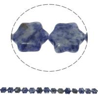 Blauer Tupfen Stein Perlen, blauer Punkt, Blume, natürlich, 13x15x5mm, Bohrung:ca. 1.5mm, ca. 28PCs/Strang, verkauft per ca. 15.7 ZollInch Strang