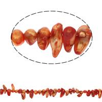 Biwa kultivierte Süßwasserperlen, Natürliche kultivierte Süßwasserperlen, rote Orange, 9-25mm, Bohrung:ca. 1mm, verkauft per ca. 14.5 ZollInch Strang