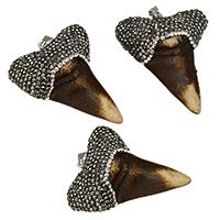 Rind-Knochen Anhänger, mit Ton & Messing, Zahn, Platinfarbe platiniert, natürliche, 41-44x52-54x16-17mm, Bohrung:ca. 5x10mm, 10PCs/Menge, verkauft von Menge