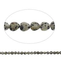 Dalmatinische Perlen, Dalmatiner, Herz, 10x5mm, Bohrung:ca. 1mm, ca. 40PCs/Strang, verkauft per ca. 15.5 ZollInch Strang