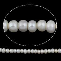 Natürliche kultivierte Süßwasserperlen Perle, Knopf, weiß, 12-13mm, Bohrung:ca. 2.5mm, verkauft von Strang
