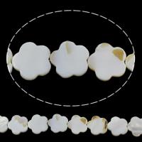Natürliche Süßwasser Muschel Perlen, Süßwassermuschel, Blume, 20x20x3mm, Bohrung:ca. 1mm, ca. 20PCs/Strang, verkauft per ca. 16 ZollInch Strang