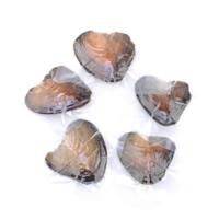 Süßwasser kultivierte Liebe wünschen Perlenaustern, Perlen, natürlich, verschiedene Größen vorhanden, verkauft von PC
