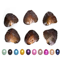 Süßwasser kultivierte Liebe wünschen Perlenaustern, Perlen, Reis, keine, 7.5-8mm, verkauft von PC