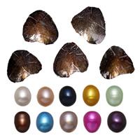 Süßwasser kultivierte Liebe wünschen Perlenaustern, Perlen, Reis, gemischte Farben, 9-9.5mm, 10PCs/Menge, verkauft von Menge