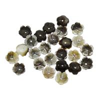 Schwarze Muschelperlen, Blume, 8x3mm, Bohrung:ca. 0.8mm, 50PCs/Tasche, verkauft von Tasche