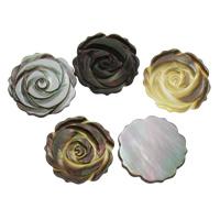 Schwarze Muschelperlen, Blume, kein Loch, 22x2mm, 10PCs/Tasche, verkauft von Tasche
