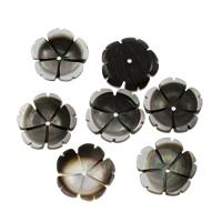Schwarze Muschelperlen, Blume, 15x3mm, Bohrung:ca. 1mm, 50PCs/Tasche, verkauft von Tasche