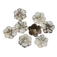 Schwarze Muschelperlen, Blume, 15x2mm, Bohrung:ca. 1mm, 50PCs/Tasche, verkauft von Tasche