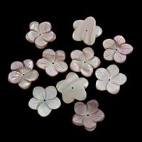 Natürliche Rosa Muschelperlen, Blume, 24x4mm, Bohrung:ca. 1mm, 10PCs/Tasche, verkauft von Tasche