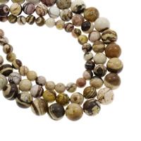 Australian Agate Perle, rund, verschiedene Größen vorhanden, verkauft per ca. 14.5 ZollInch Strang