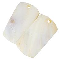Hyriopsys Cumingii Anhänger, Rechteck, natürliche, 32x60x4mm, Bohrung:ca. 3.5mm, 10PCs/Menge, verkauft von Menge