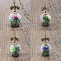 Zinklegierung Pullover Halskette, Glas, mit Getrocknete Blumen & Zinklegierung, für Frau, keine, 47x25mm, verkauft per ca. 25.5 ZollInch Strang